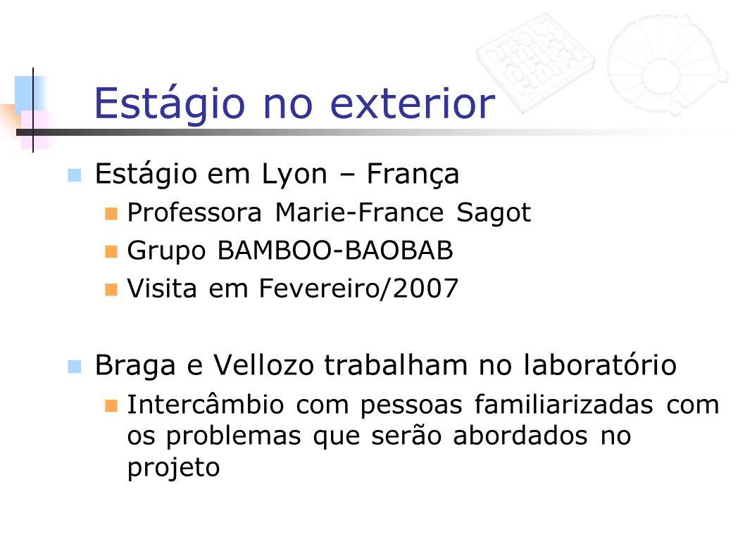 Estágio no exterior Estágio em Lyon – França Professora Marie-France Sagot Grupo BAMBOO-BAOBAB Visita em Fevereiro/2007 Braga e Vellozo trabalham no l