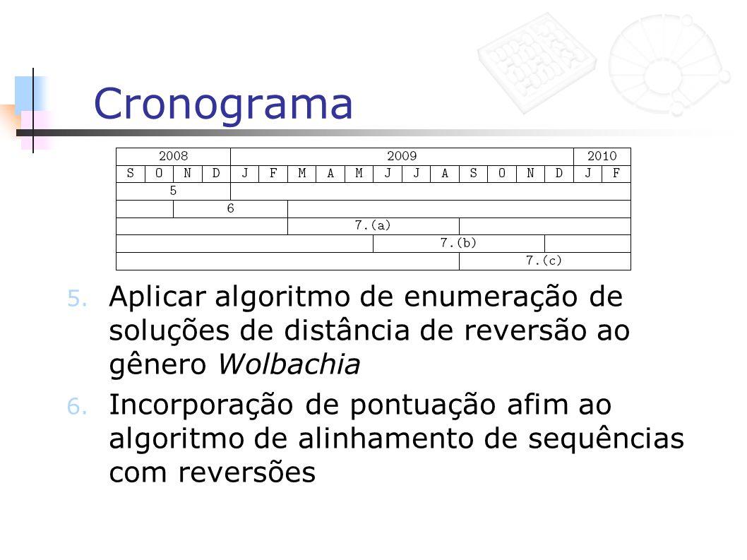 Cronograma 5. Aplicar algoritmo de enumeração de soluções de distância de reversão ao gênero Wolbachia 6. Incorporação de pontuação afim ao algoritmo