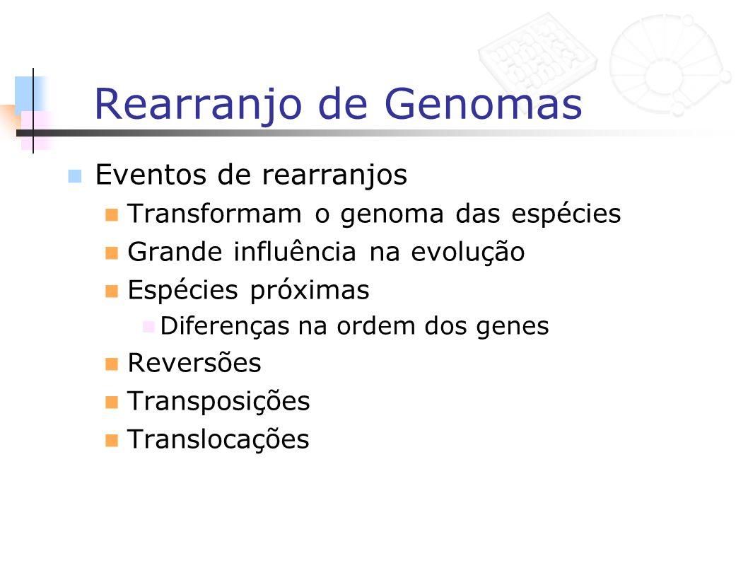 Rearranjo de Genomas Eventos de rearranjos Transformam o genoma das espécies Grande influência na evolução Espécies próximas Diferenças na ordem dos g