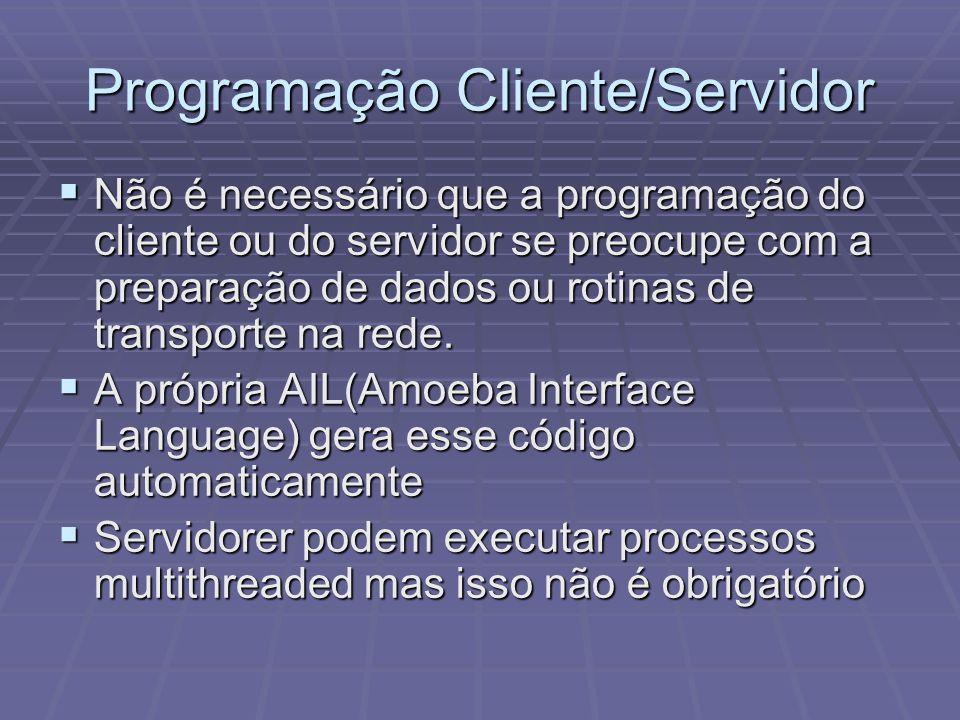 Programação Cliente/Servidor Não é necessário que a programação do cliente ou do servidor se preocupe com a preparação de dados ou rotinas de transpor