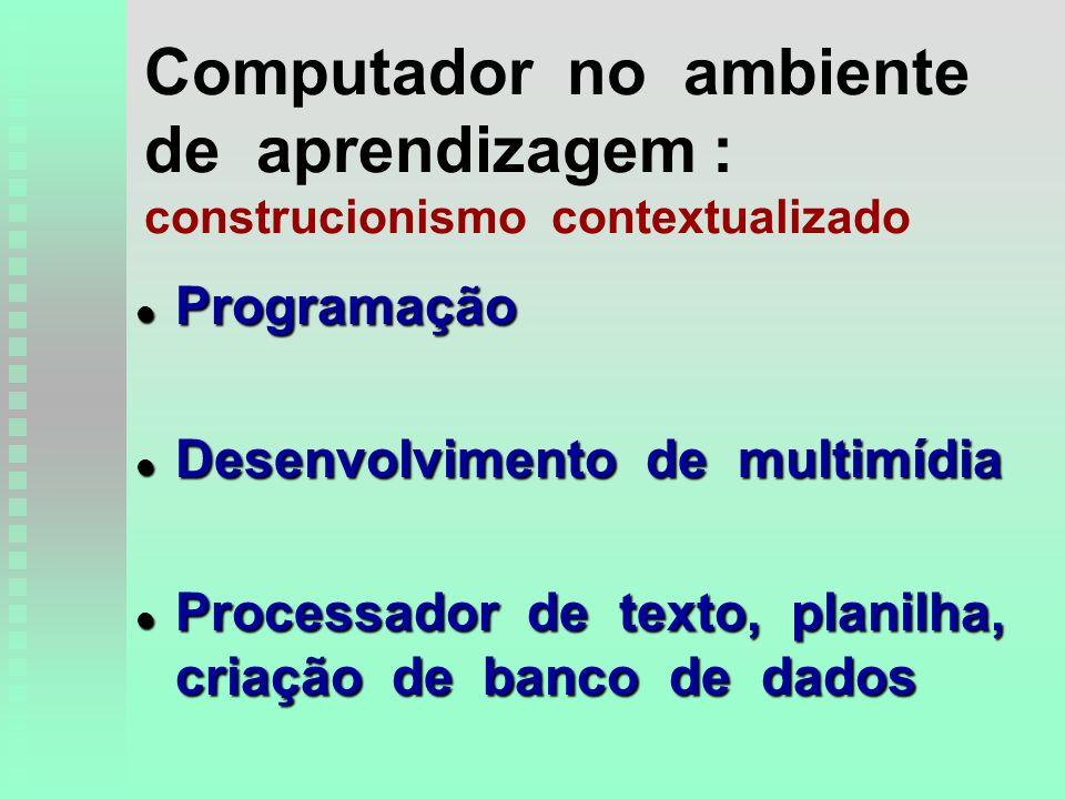 Computador no ambiente de aprendizagem : construcionismo contextualizado l Programação l Desenvolvimento de multimídia l Processador de texto, planilha, criação de banco de dados