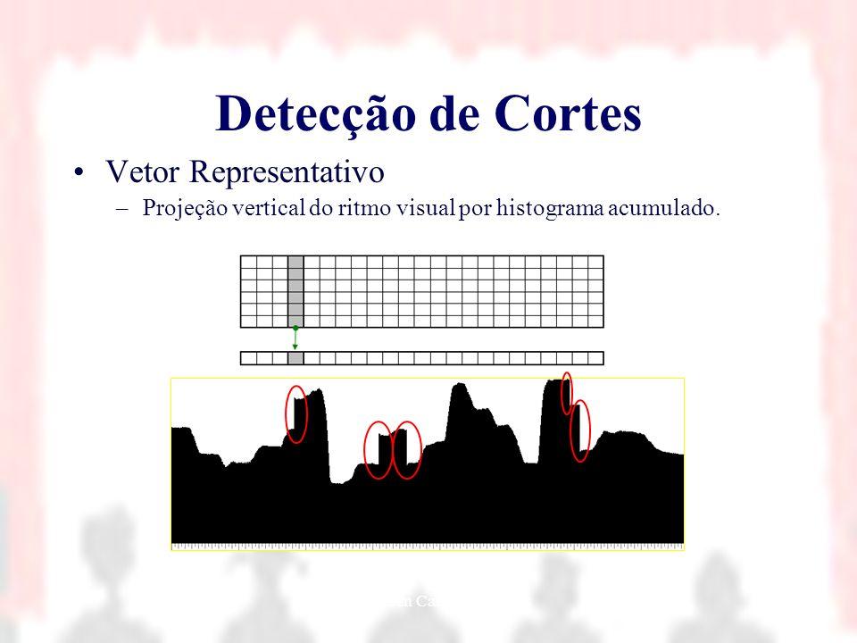 Nielsen Cassiano Simões19 Detecção de Cortes Vetor Representativo –Projeção vertical do ritmo visual por histograma acumulado.