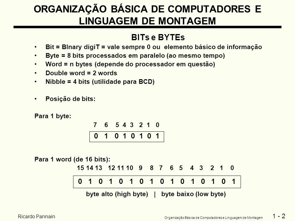 1 - 2 Organização Básica de Computadores e Linguagem de Montagem Ricardo Pannain ORGANIZAÇÃO BÁSICA DE COMPUTADORES E LINGUAGEM DE MONTAGEM BITs e BYT