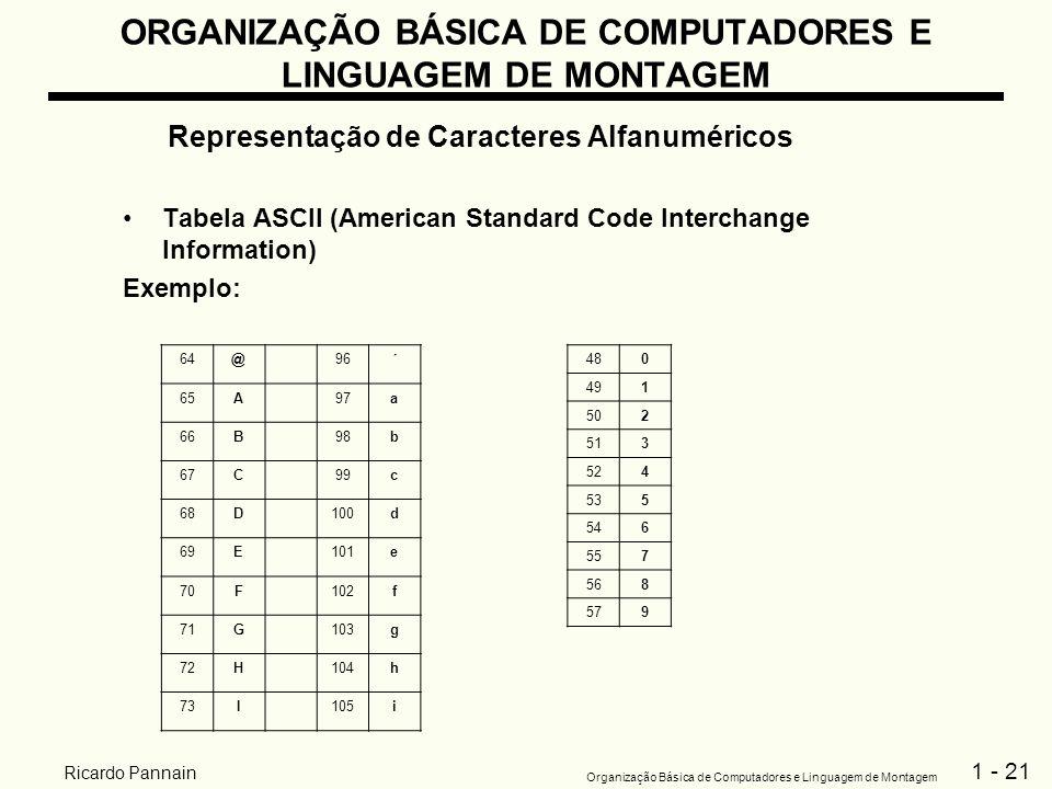 1 - 21 Organização Básica de Computadores e Linguagem de Montagem Ricardo Pannain ORGANIZAÇÃO BÁSICA DE COMPUTADORES E LINGUAGEM DE MONTAGEM Represent