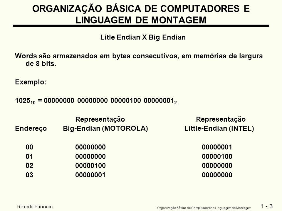 1 - 3 Organização Básica de Computadores e Linguagem de Montagem Ricardo Pannain ORGANIZAÇÃO BÁSICA DE COMPUTADORES E LINGUAGEM DE MONTAGEM Litle Endi