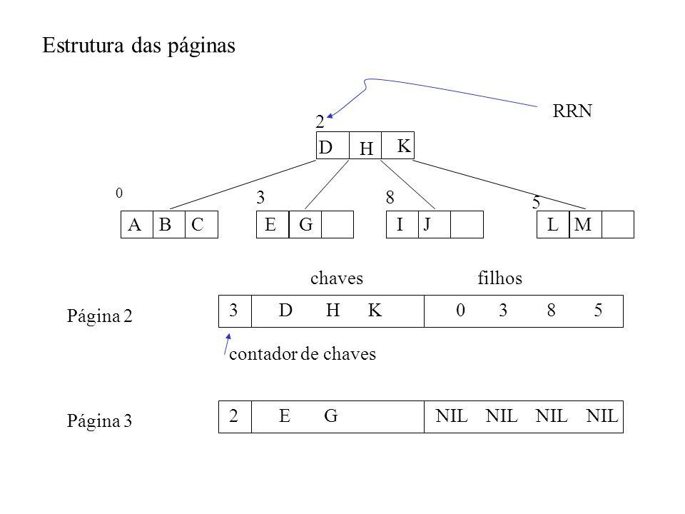 Estrutura das páginas D H K A BC E G IJ LM 0 38 5 2 3D H K0 3 8 5 contador de chaves chavesfilhos Página 2 2E GNIL NIL Página 3 RRN