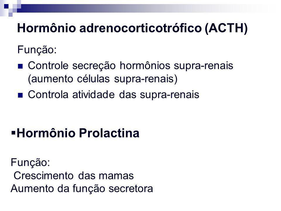 Hormônio adrenocorticotrófico (ACTH) Função: Controle secreção hormônios supra-renais (aumento células supra-renais) Controla atividade das supra-rena
