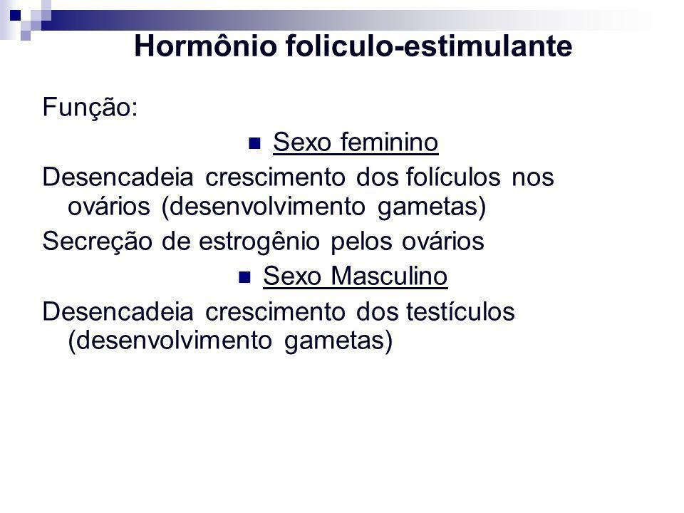 Hormônio foliculo-estimulante Função: Sexo feminino Desencadeia crescimento dos folículos nos ovários (desenvolvimento gametas) Secreção de estrogênio