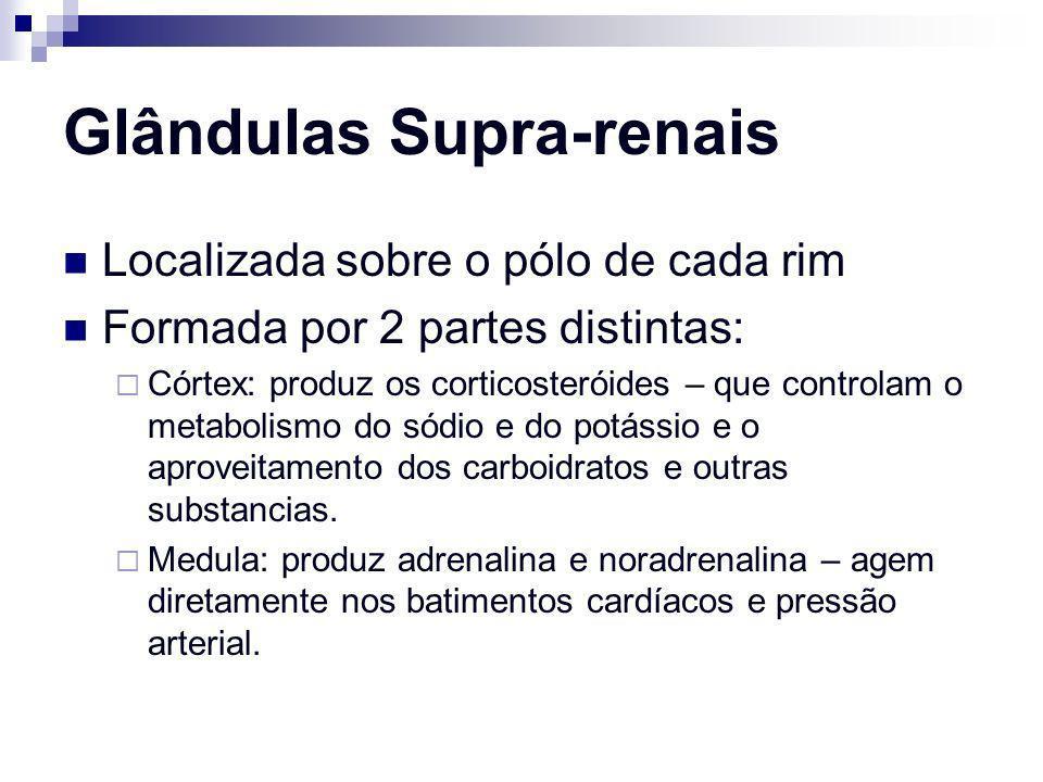 Glândulas Supra-renais Localizada sobre o pólo de cada rim Formada por 2 partes distintas: Córtex: produz os corticosteróides – que controlam o metabo