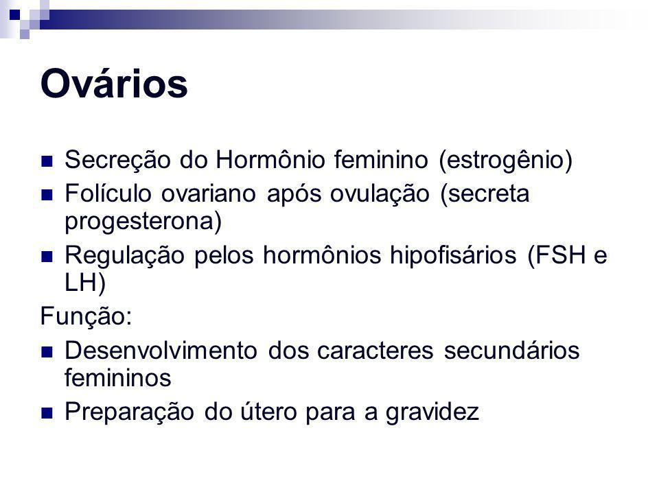Ovários Secreção do Hormônio feminino (estrogênio) Folículo ovariano após ovulação (secreta progesterona) Regulação pelos hormônios hipofisários (FSH