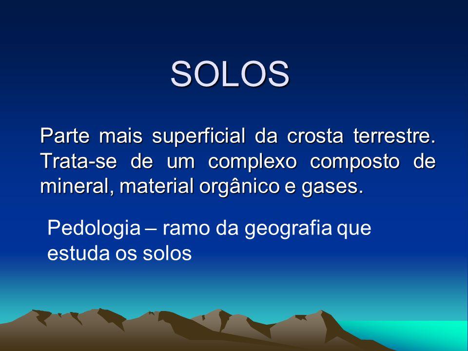 Formação do solo Decomposição da rocha (intemperismo) Físico Originam os componentes minerais Material orgânico Húmus SOLO Responsável pela fertilidade do solo Químico