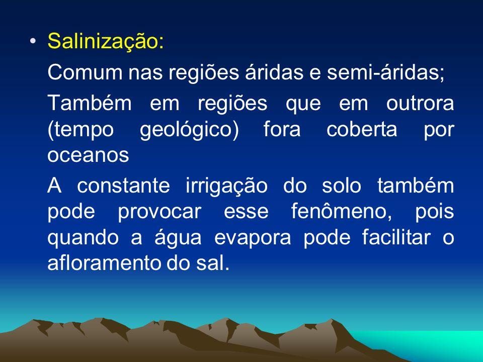 Salinização: Comum nas regiões áridas e semi-áridas; Também em regiões que em outrora (tempo geológico) fora coberta por oceanos A constante irrigação