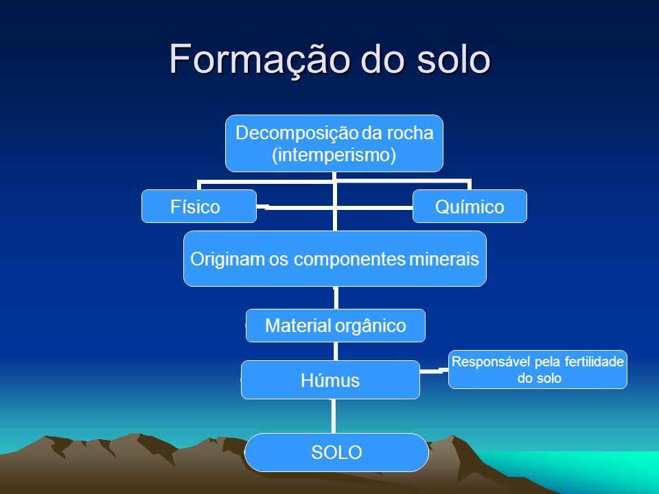 Formação do solo Decomposição da rocha (intemperismo) Físico Originam os componentes minerais Material orgânico Húmus SOLO Responsável pela fertilidad