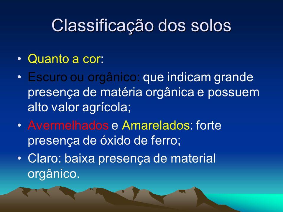 Classificação dos solos Quanto a cor: Escuro ou orgânico: que indicam grande presença de matéria orgânica e possuem alto valor agrícola; Avermelhados