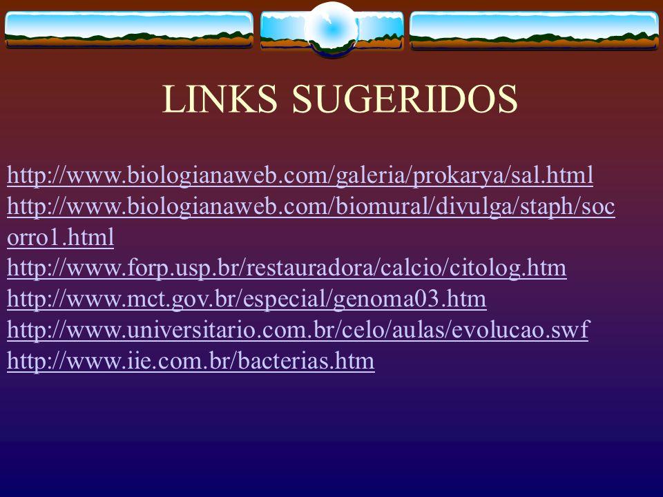 LINKS SUGERIDOS http://www.biologianaweb.com/galeria/prokarya/sal.html http://www.biologianaweb.com/biomural/divulga/staph/soc orro1.html http://www.f