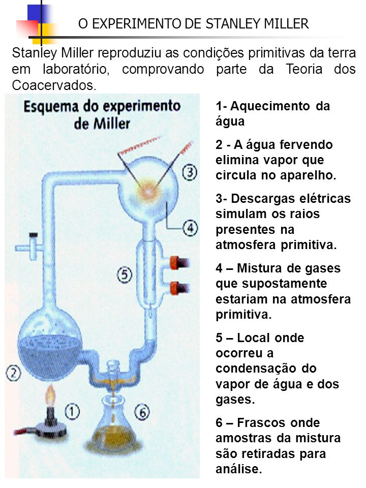 Stanley Miller reproduziu as condições primitivas da terra em laboratório, comprovando parte da Teoria dos Coacervados. O EXPERIMENTO DE STANLEY MILLE