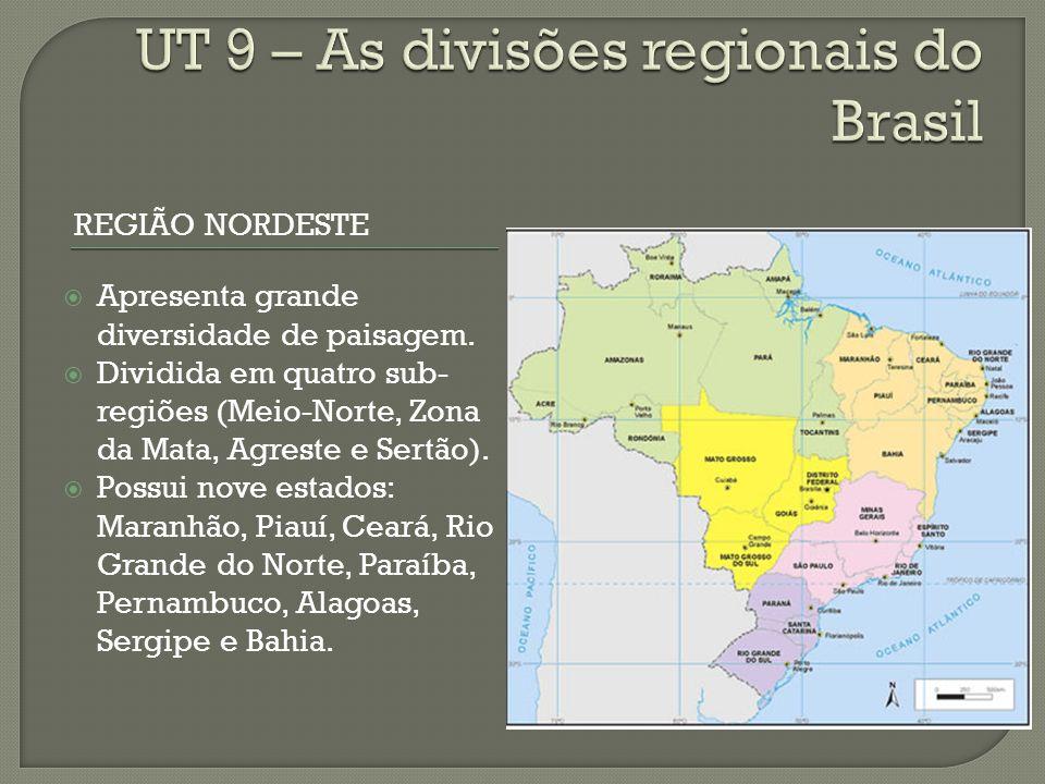 REGIÃO NORDESTE Apresenta grande diversidade de paisagem.