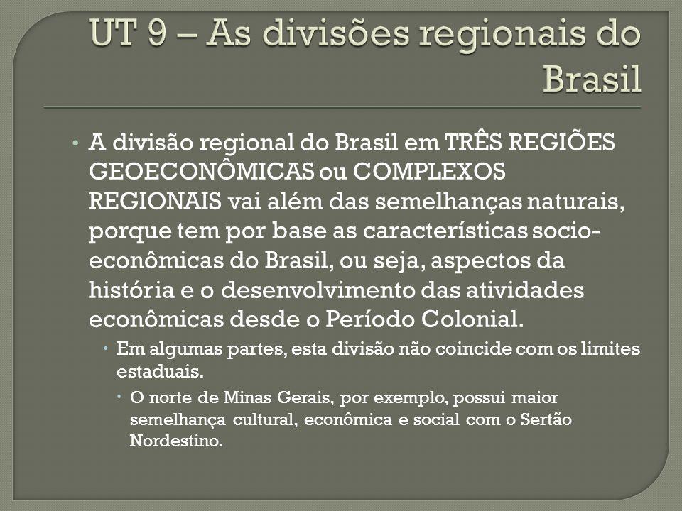 A divisão regional do Brasil em TRÊS REGIÕES GEOECONÔMICAS ou COMPLEXOS REGIONAIS vai além das semelhanças naturais, porque tem por base as características socio- econômicas do Brasil, ou seja, aspectos da história e o desenvolvimento das atividades econômicas desde o Período Colonial.