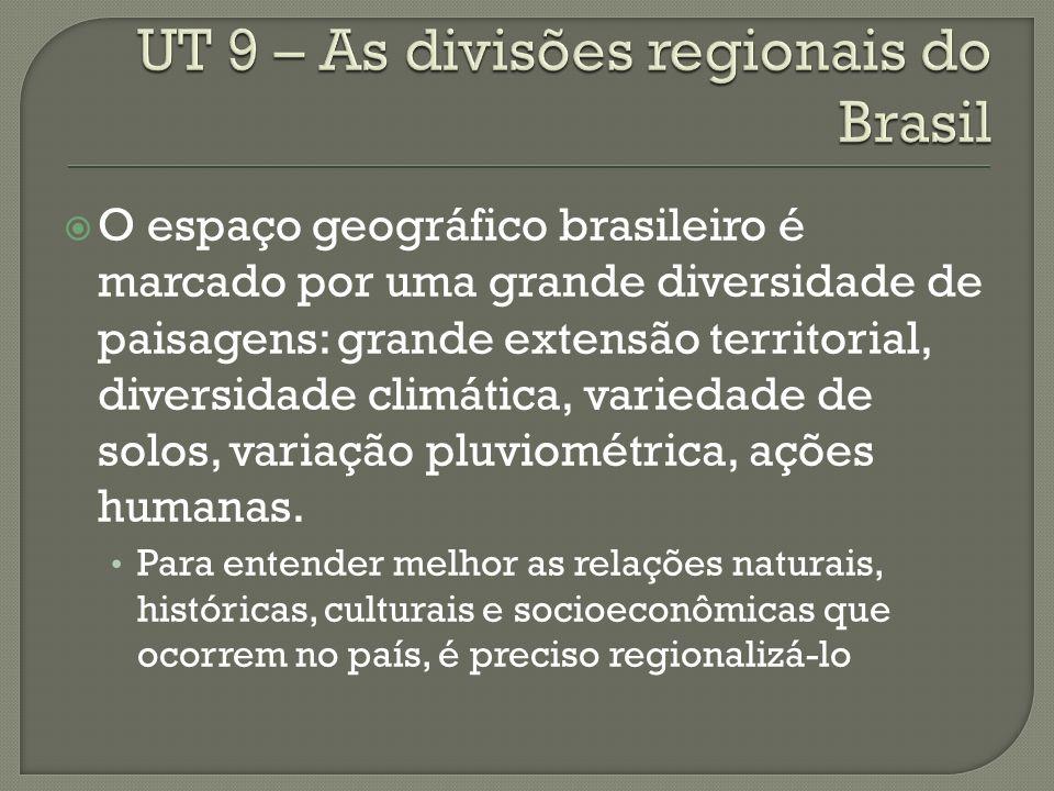 Outra forma de regionalizar o Brasil foi proposta pelo geógrafo Pedro Pinchas Geiger.