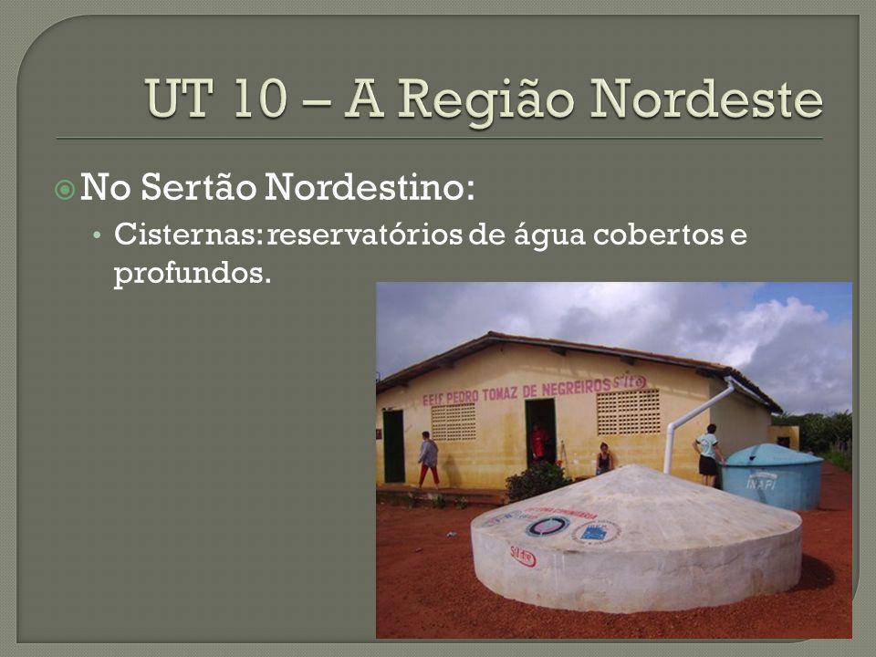 No Sertão Nordestino: Cisternas: reservatórios de água cobertos e profundos.