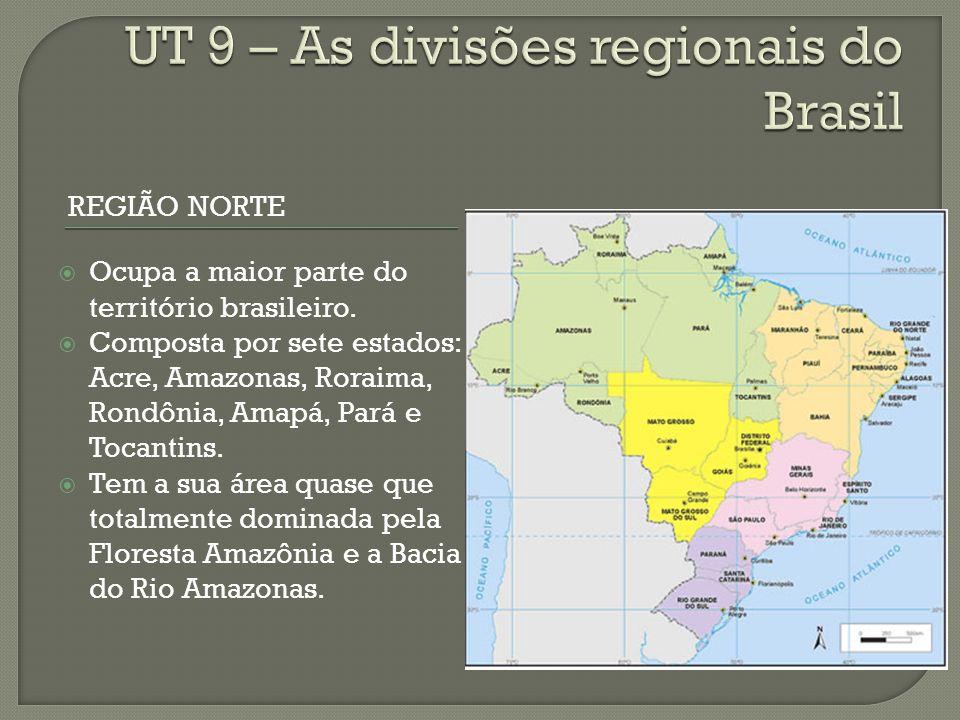 REGIÃO NORTE Ocupa a maior parte do território brasileiro.