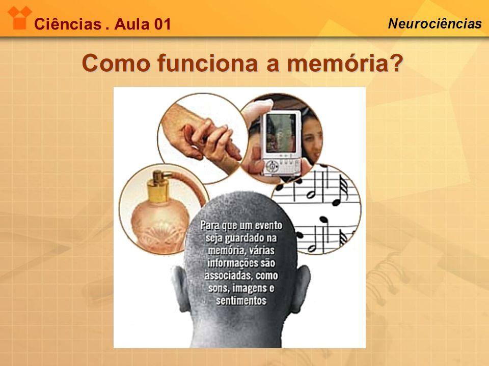 Ciências. Aula 01 Neurociências Como funciona a memória?