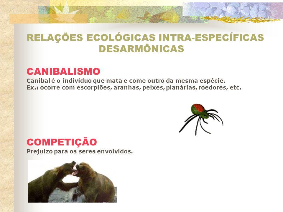 RELAÇÕES ECOLÓGICAS INTRA-ESPECÍFICAS DESARMÔNICAS CANIBALISMO Canibal é o indivíduo que mata e come outro da mesma espécie. Ex.: ocorre com escorpiõe