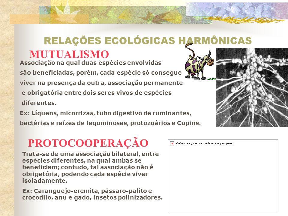 RELAÇÕES ECOLÓGICAS HARMÔNICAS Inquilinismo Comensalismo Associação em que apenas uma espécie (inquilino) se beneficia, procurando abrigo ou suporte no corpo de outra espécie (hospedeiro), sem prejudicá-lo.