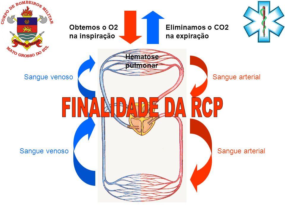 Sangue arterial Sangue venoso Hematose pulmonar Eliminamos o CO2 na expiração Obtemos o O2 na inspiração