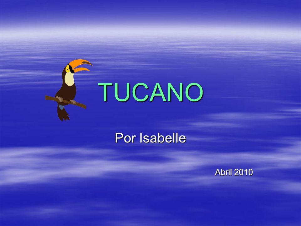 TUCANO Por Isabelle Abril 2010