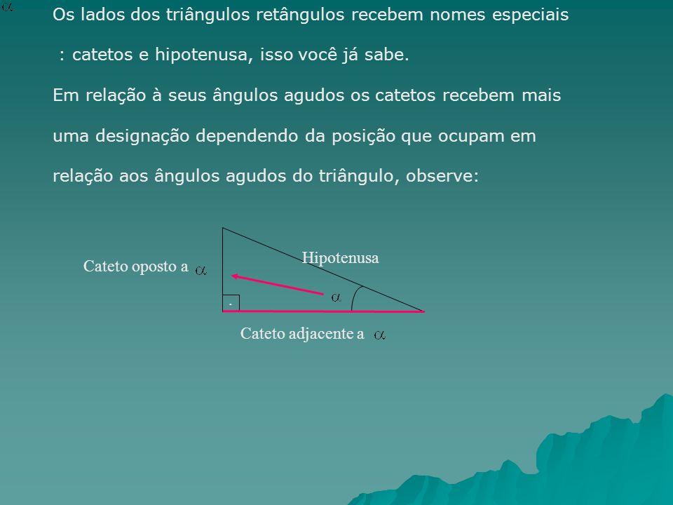 Os lados dos triângulos retângulos recebem nomes especiais : catetos e hipotenusa, isso você já sabe. Em relação à seus ângulos agudos os catetos rece