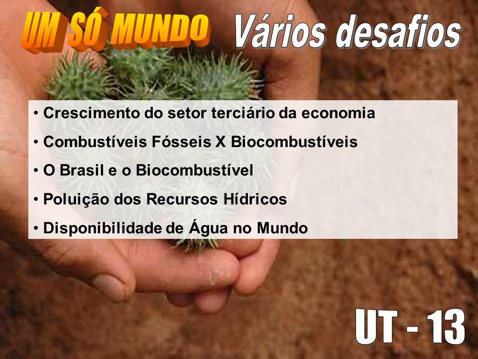 Crescimento do setor terciário da economia Combustíveis Fósseis X Biocombustíveis O Brasil e o Biocombustível Poluição dos Recursos Hídricos Disponibi