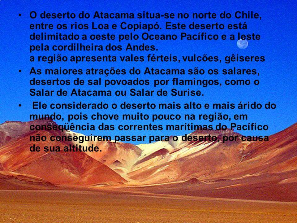 O deserto do Atacama situa-se no norte do Chile, entre os rios Loa e Copiapó. Este deserto está delimitado a oeste pelo Oceano Pacífico e a leste pela
