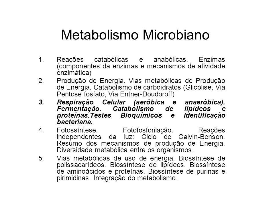 Metabolismo Microbiano 1.Reações catabólicas e anabólicas.