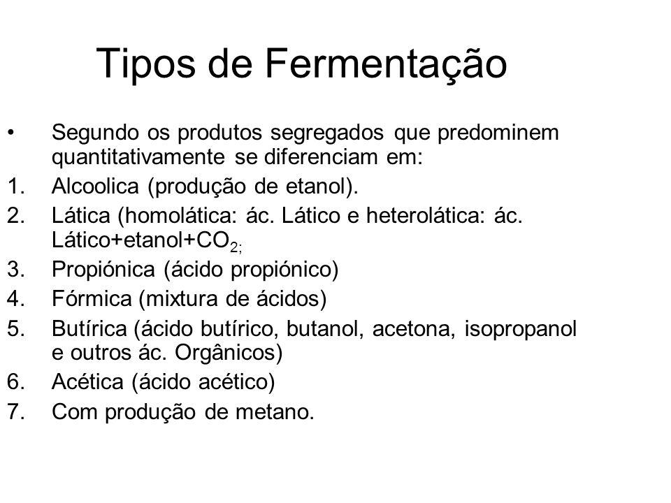 Tipos de Fermentação Segundo os produtos segregados que predominem quantitativamente se diferenciam em: 1.Alcoolica (produção de etanol).