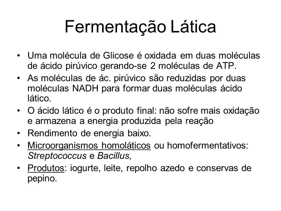 Fermentação Lática Uma molécula de Glicose é oxidada em duas moléculas de ácido pirúvico gerando-se 2 moléculas de ATP.