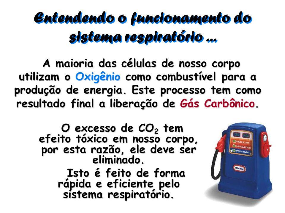 Entendendo o funcionamento do sistema respiratório... A maioria das células de nosso corpo utilizam o Oxigênio como combustível para a produção de ene