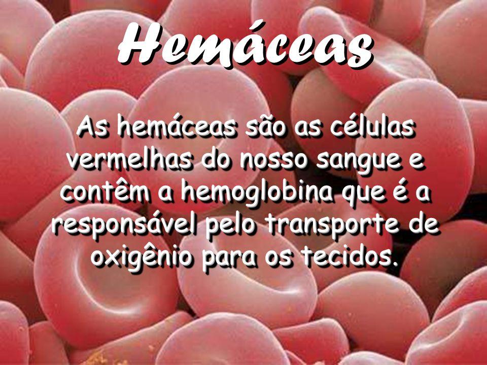 Hemáceas As hemáceas são as células vermelhas do nosso sangue e contêm a hemoglobina que é a responsável pelo transporte de oxigênio para os tecidos.