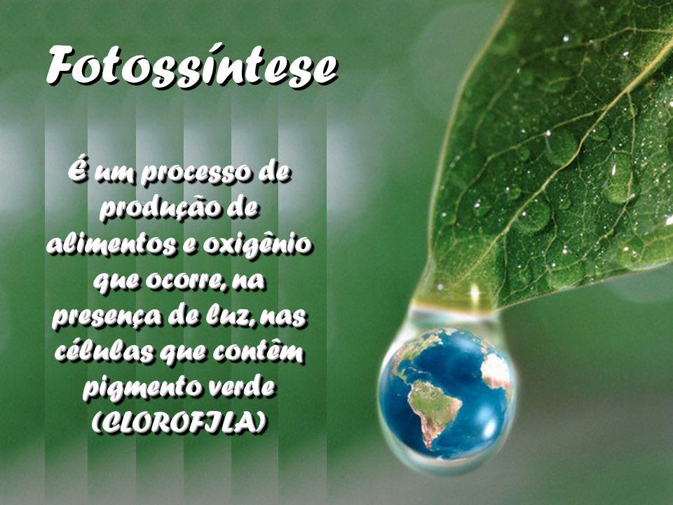 É um processo de produção de alimentos e oxigênio que ocorre, na presença de luz, nas células que contêm pigmento verde (CLOROFILA) Fotossíntese