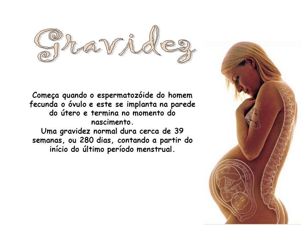 Começa quando o espermatozóide do homem fecunda o óvulo e este se implanta na parede do útero e termina no momento do nascimento. Uma gravidez normal