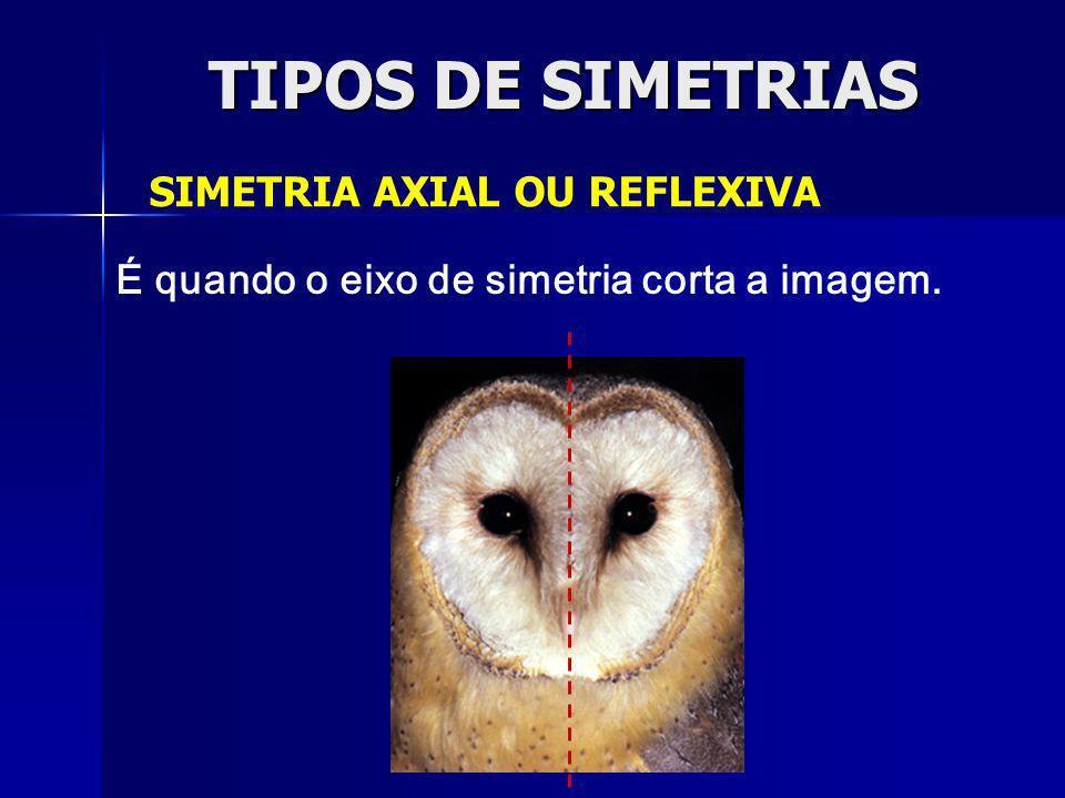TIPOS DE SIMETRIAS SIMETRIA ESPELHADA É quando o eixo de simetria não corta a imagem, ou seja, não está sobre a figura, e a imagem espelhada apresenta-se invertida.