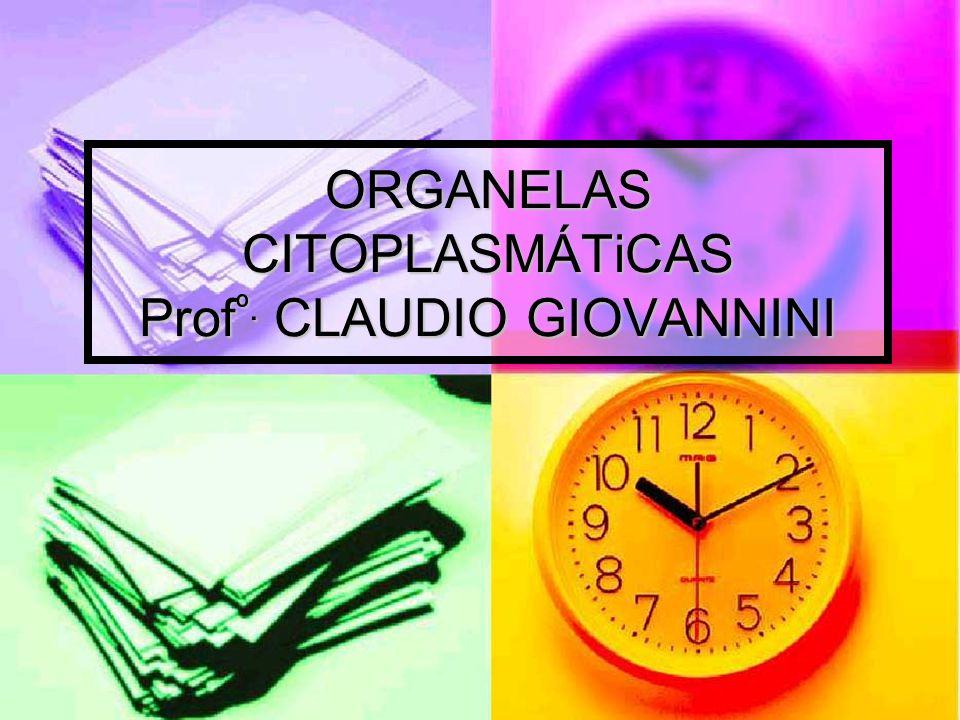 ORGANELAS CITOPLASMÁTiCAS Prof º. CLAUDIO GIOVANNINI