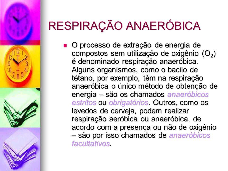 RESPIRAÇÃO ANAERÓBICA O processo de extração de energia de compostos sem utilização de oxigênio (O 2 ) é denominado respiração anaeróbica.