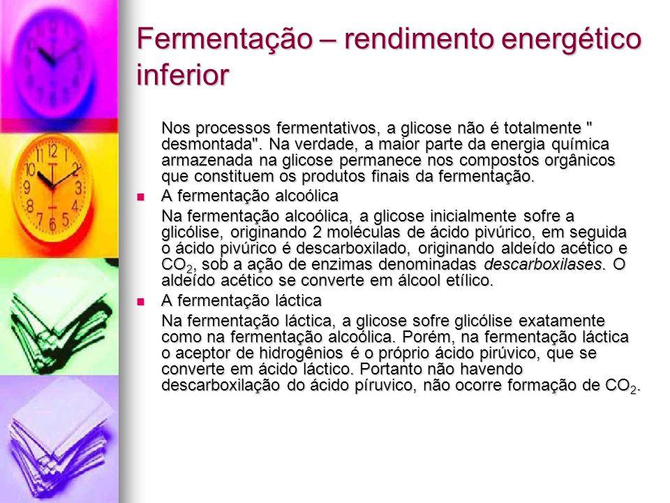 Fermentação – rendimento energético inferior Nos processos fermentativos, a glicose não é totalmente desmontada .