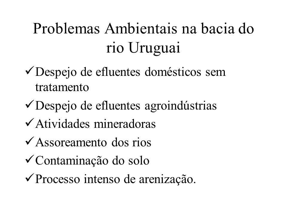 Problemas Ambientais na bacia do rio Uruguai Despejo de efluentes domésticos sem tratamento Despejo de efluentes agroindústrias Atividades mineradoras