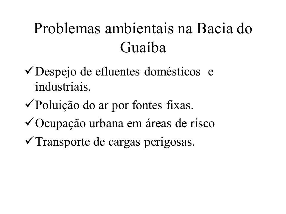 Problemas ambientais na Bacia do Guaíba Despejo de efluentes domésticos e industriais. Poluição do ar por fontes fixas. Ocupação urbana em áreas de ri