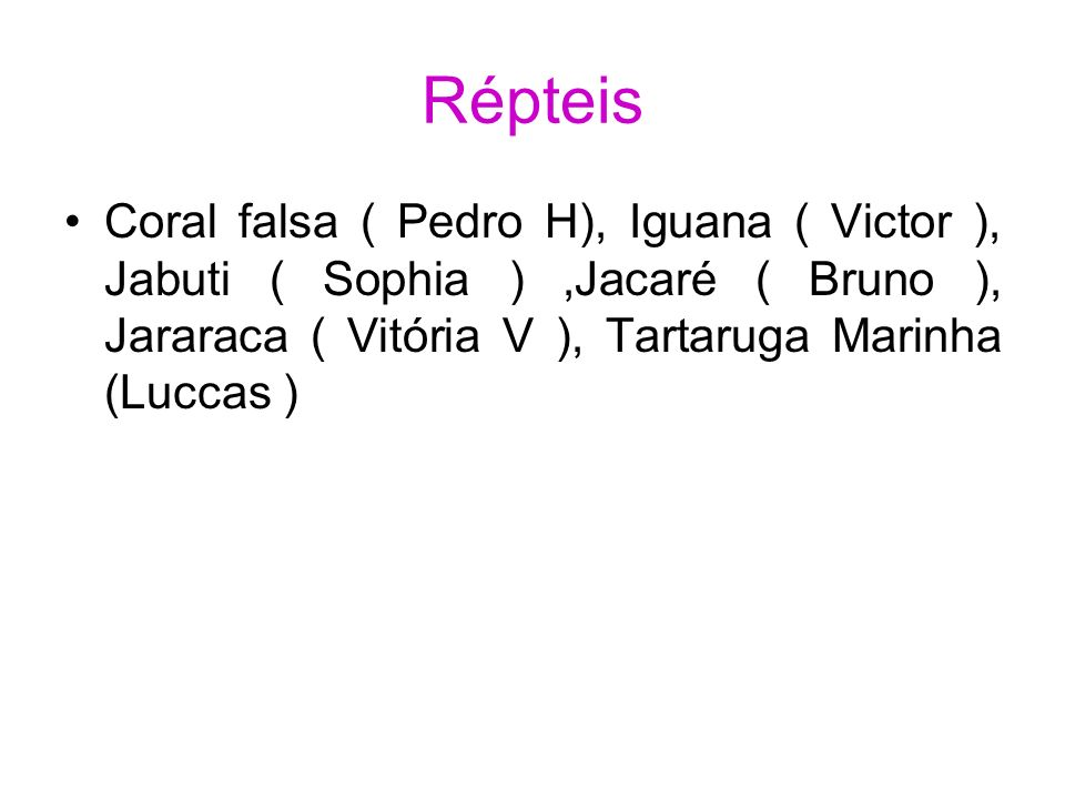 Répteis Coral falsa ( Pedro H), Iguana ( Victor ), Jabuti ( Sophia ),Jacaré ( Bruno ), Jararaca ( Vitória V ), Tartaruga Marinha (Luccas )