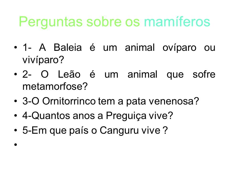 Perguntas sobre os mamíferos 1- A Baleia é um animal ovíparo ou vivíparo.