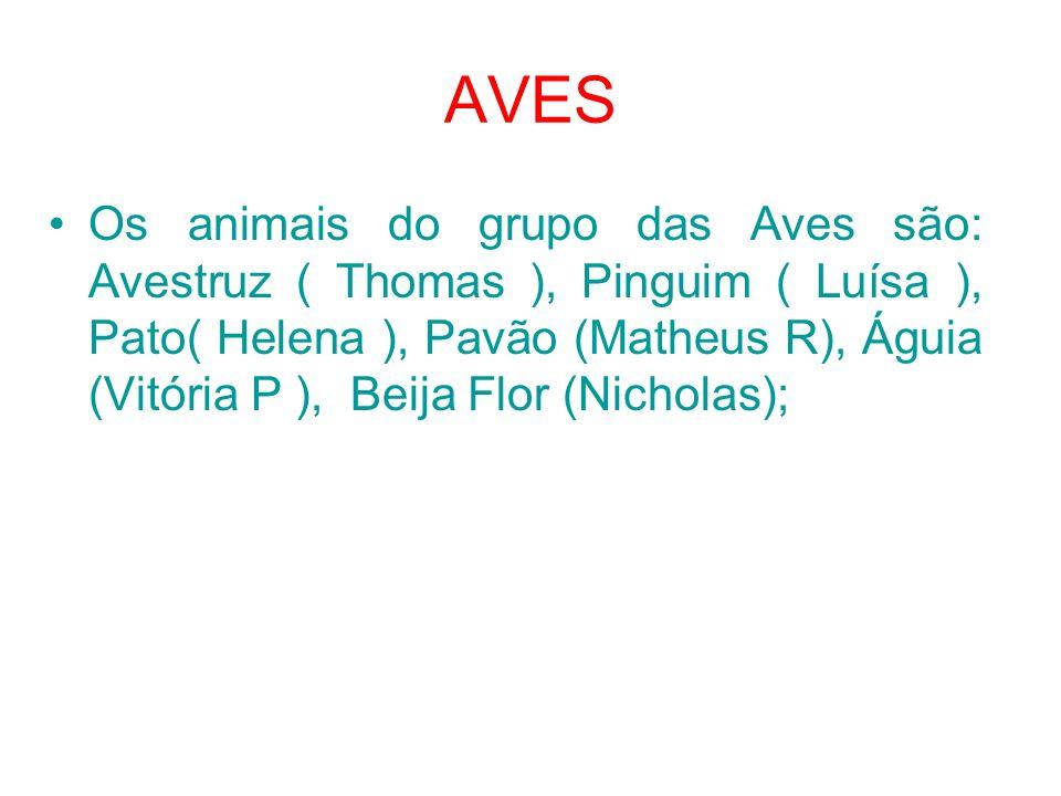 AVES Os animais do grupo das Aves são: Avestruz ( Thomas ), Pinguim ( Luísa ), Pato( Helena ), Pavão (Matheus R), Águia (Vitória P ), Beija Flor (Nicholas);