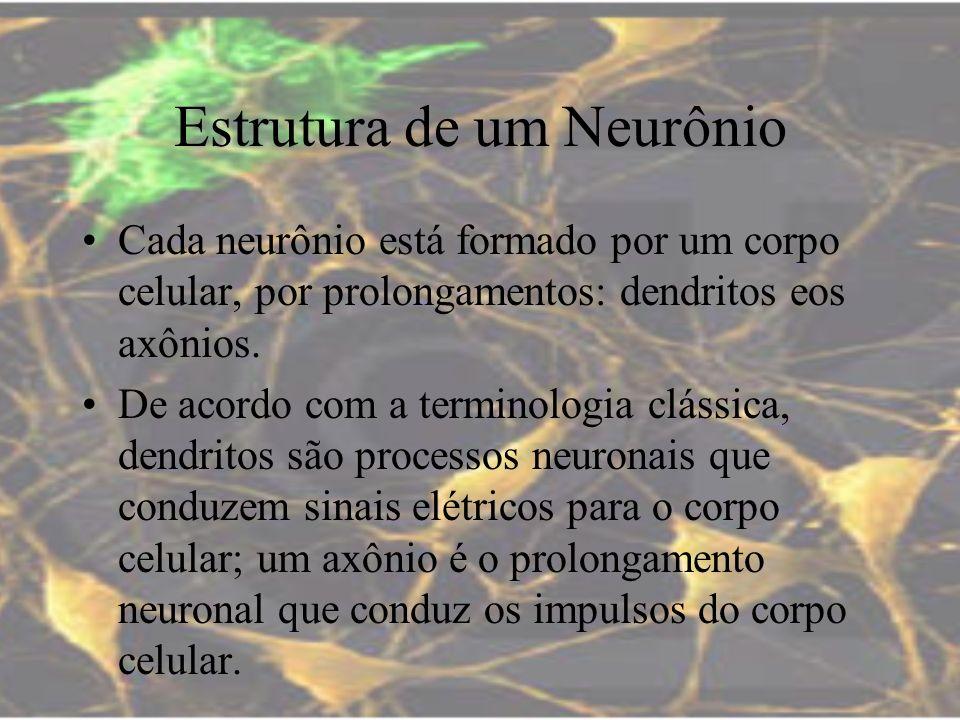 Estrutura de um Neurônio Cada neurônio está formado por um corpo celular, por prolongamentos: dendritos eos axônios. De acordo com a terminologia clás